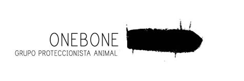 One Bone | Grupo proteccionista animal