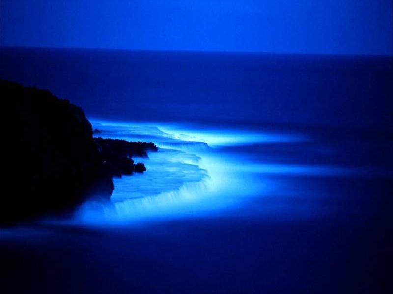 El color azul, fotos impresionantes