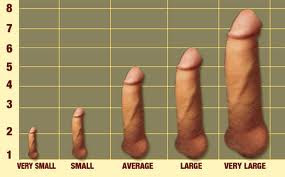 What size small penis