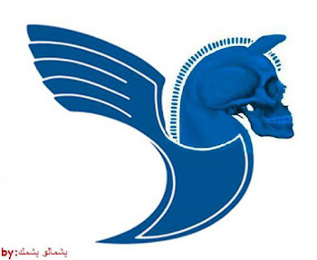 IRAN AIR'S NEW LOGO........