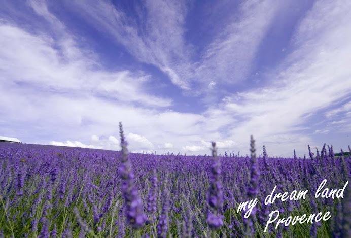 a beautiful place--Provence