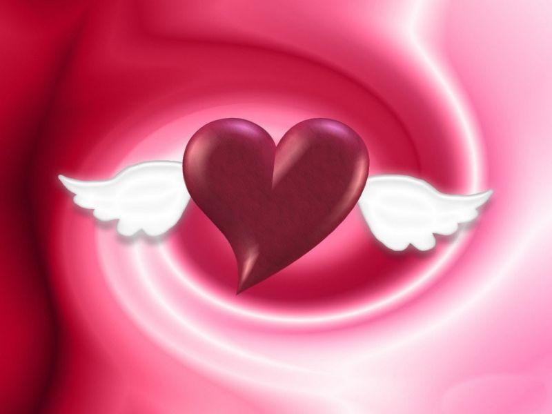 corazones de amor. fotos de corazones de amor