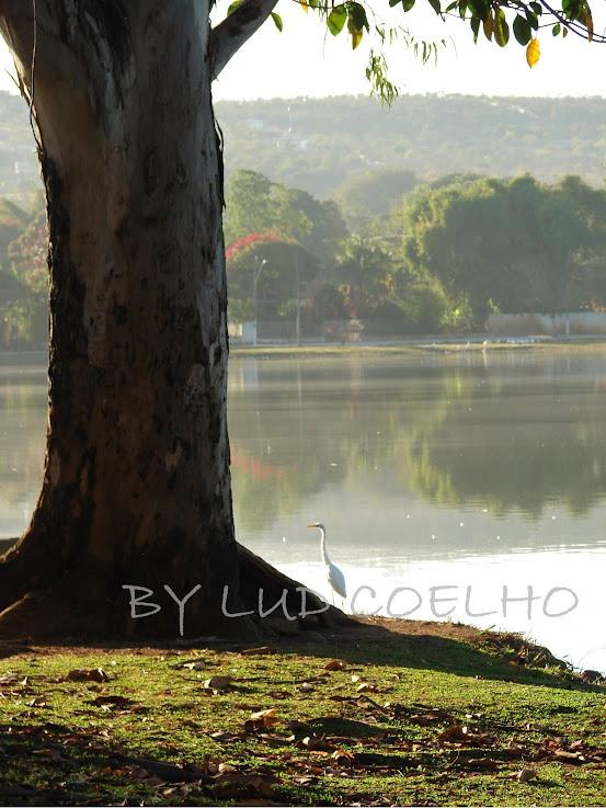 Orla da lagoa