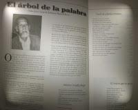 RECOMENDADO DEL MES EDICIÓN 74-75 DE LA REVISTA PUESTO DE COMBATE