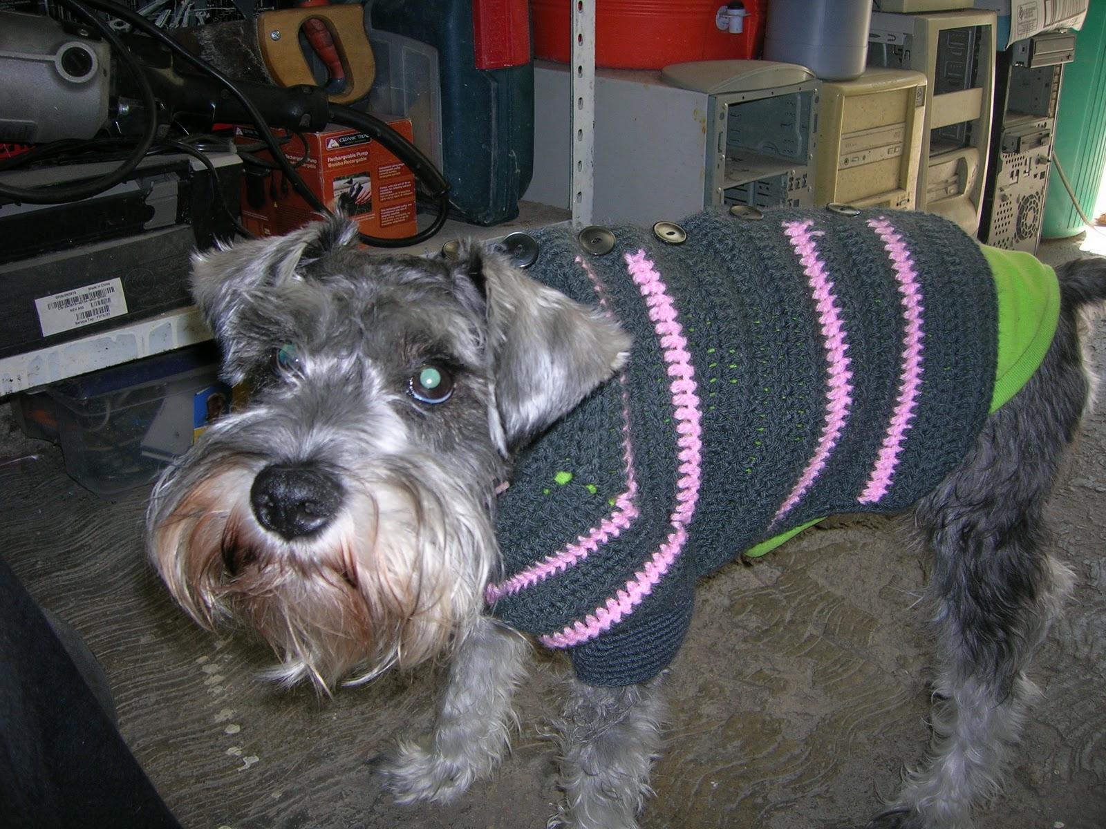 Mis labores en Crochet: Sueter para perro