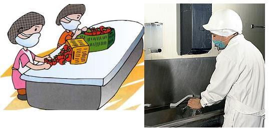 Se ora l cuma normas de higiene personal utensilios y for Empresas de utensilios de cocina