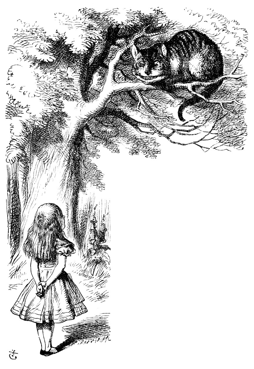 lewis carrolls alice in wonderland Pictures from alice's adventures in wonderland - all original illustrations from sir john tenniel.