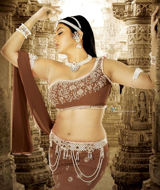 Tamil actress Namitha Romatic pose navel show beautiful photo shoot ...