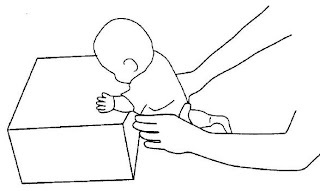 تعليم الجلوس والحبو والمشي للطفل