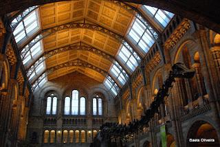 Átrio de entrada no Museu de História Natural, Londres, Janeiro 2010