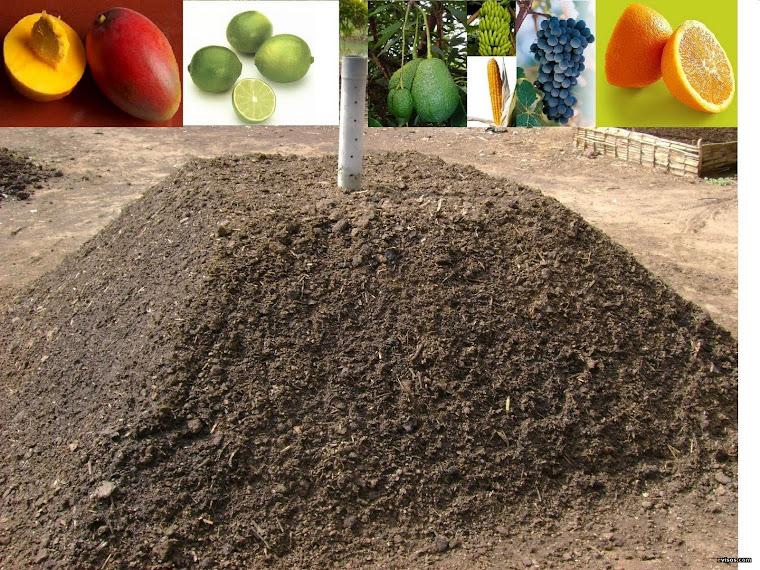 el uso del abono organico en la agroindustria