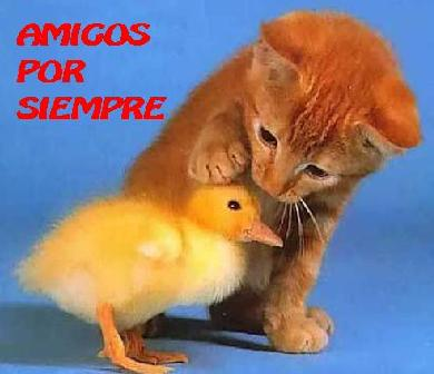 FELÍZ DÍA DEL AMIGO A TODOOOOOSSSSS!!!!!!! Amigos%25202
