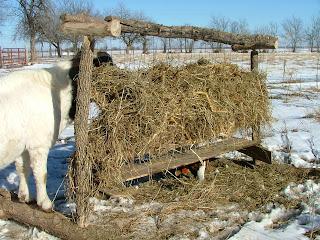 Steven's Hay Feeder