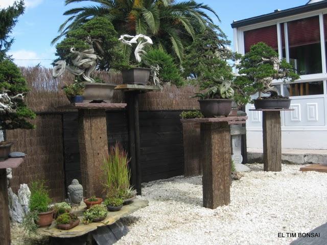Kingii un nuevo jard n para vila for Estanterias para bonsais
