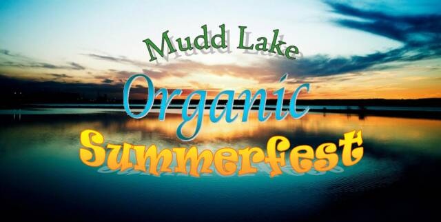 summerfest logo 2010. Lake Organic Summerfest!