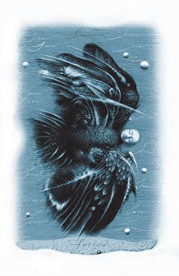 Illustrations by Vladyslav Yerko