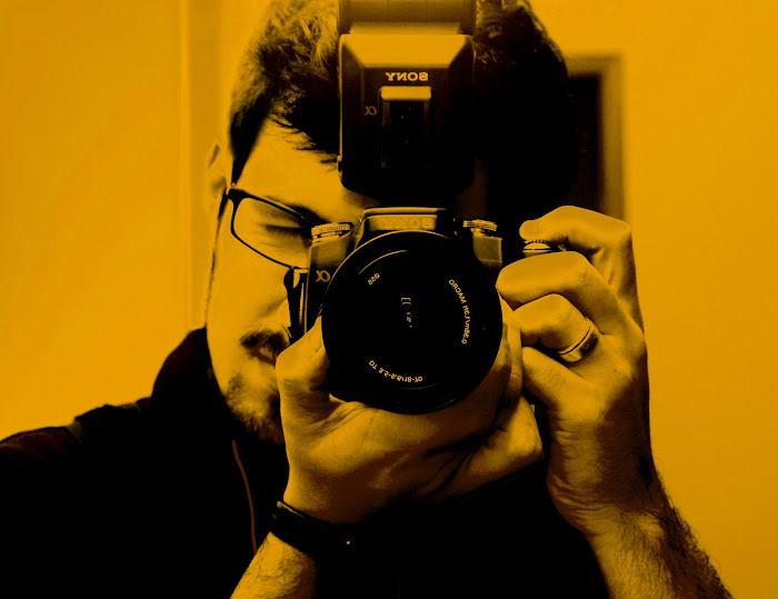 Photography Orange
