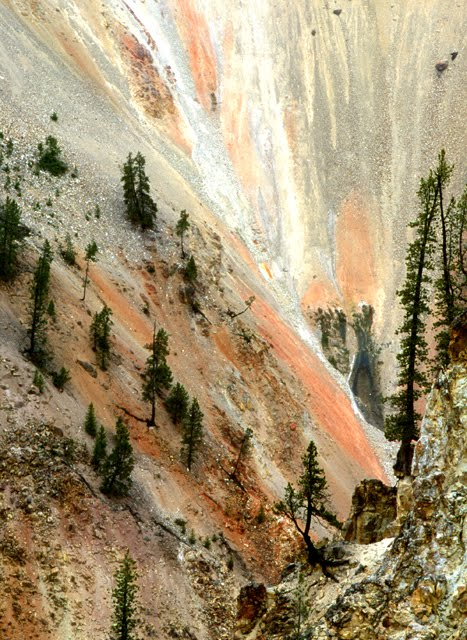 Yellowstone Canyon, below Lower Falls
