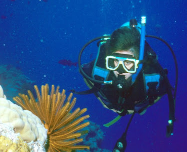 Diver with Feather Star #11104