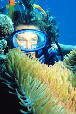 Diver with Magnificant Sea Anemone