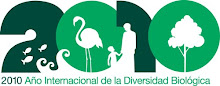 2010: ANO INTERNACIONAL DA DIVERSIDADE BIOLÓXICA