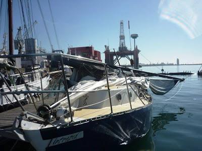 ballena ataca velero