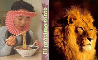 7 diferencias leon