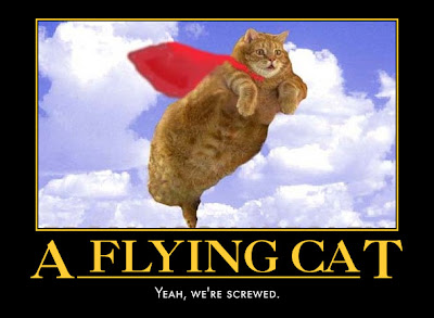 flying demotivational