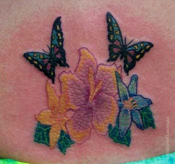 Butterflies Tattoos, Butterflies Design, Best Butterflies, Butterfly Pictures, Butterflies Galleries, Free Butterfly Image, Personal Best Butterfly