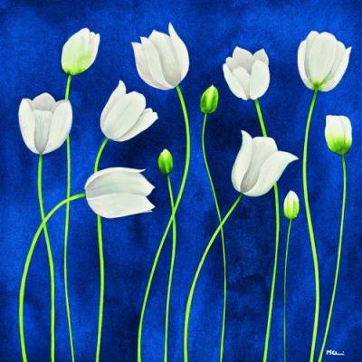 tulipani danzanti