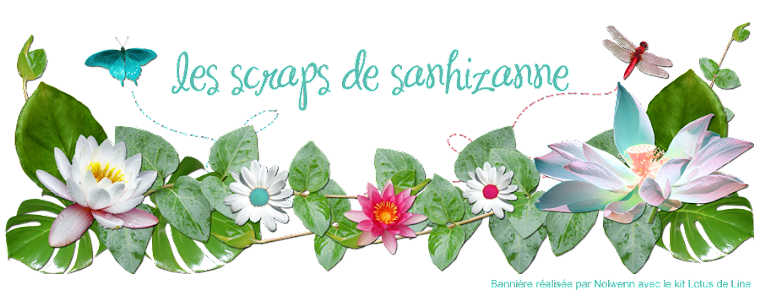 les scraps de sanhizanne