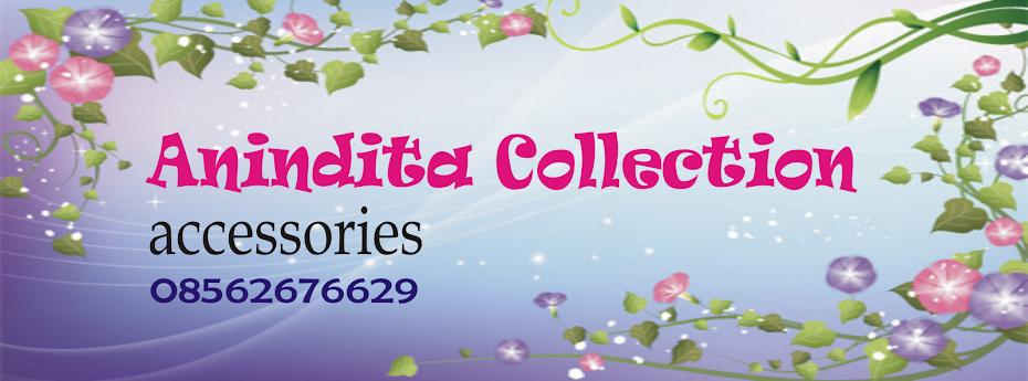 Anindita Collection