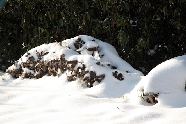 legna e neve