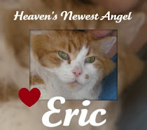 Goodbye Sweet Eric