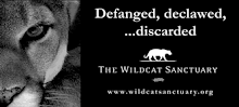 Help Protect Wildcats