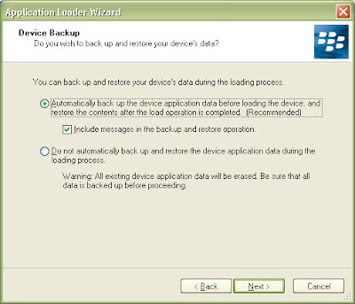Leave the option selected to automatically back up your Blackberry device application data and also the checkbox for including the messages.