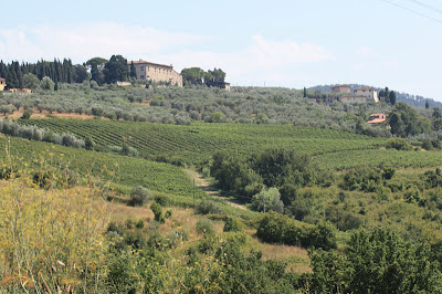 The hills of San Martino and the Chianti winery on the hill with the vineyards below.