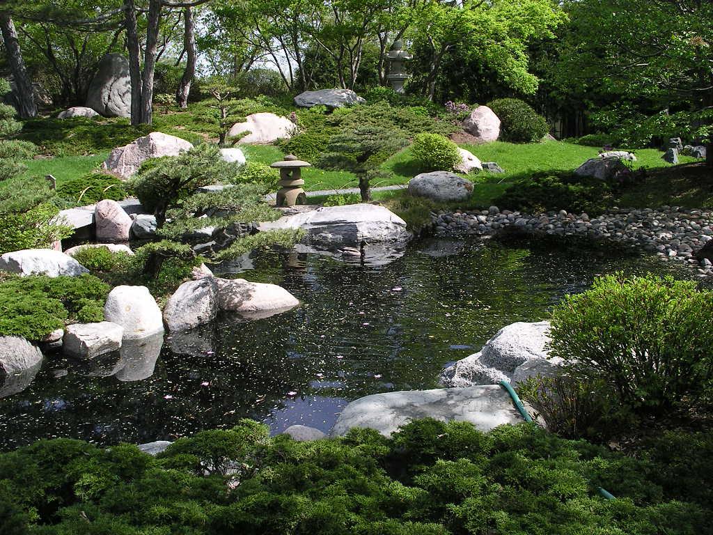 Gardener blog bonsai and the japanese garden for Japanese garden pool