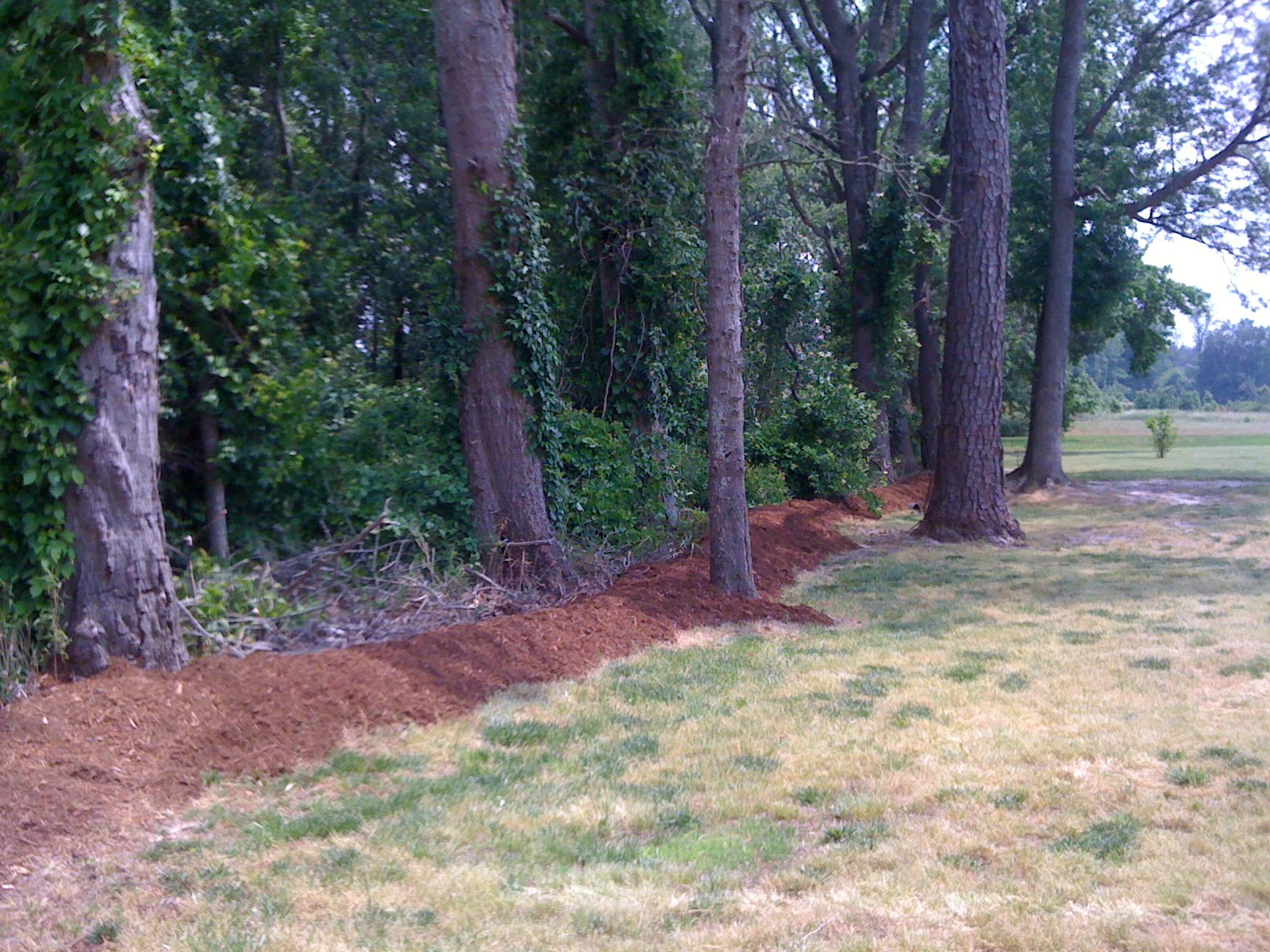 that 39 s so martha i have been very busy backyard berm