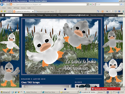 http://galeriejackieblogressources.blogspot.com/2010/01/blog-template-canards-free-gratuit.html