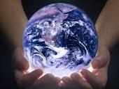 """Reflorestando o Planeta """"Visite"""""""