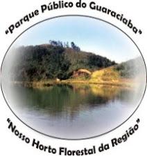 Nossa luta pelo parque Guaraciaba