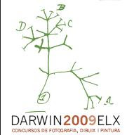 ACCÉSIT - DARWIN ELX CONCURSO DE FOTOGRAFIA «BIODIVERSITAT« 2009