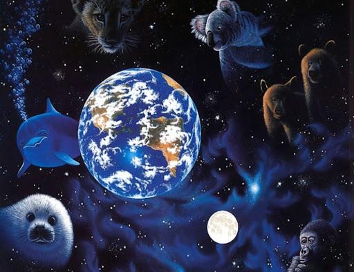 ¸.•*Un Mundo Animal*•.¸
