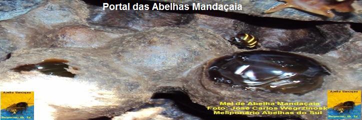 = PÓRTAL DAS  ABELHAS MANDAÇAIA =