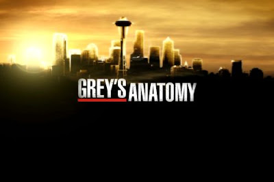 http://4.bp.blogspot.com/_11T4HEFMTBk/TITx4eKYOgI/AAAAAAAAAX0/li_iRKi7AlM/s1600/greys-anatomy.jpg