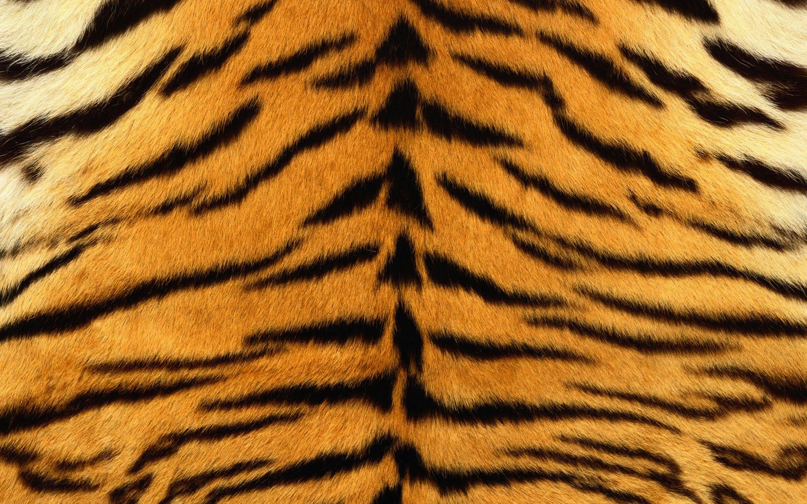 animal skin patterns - photo #1