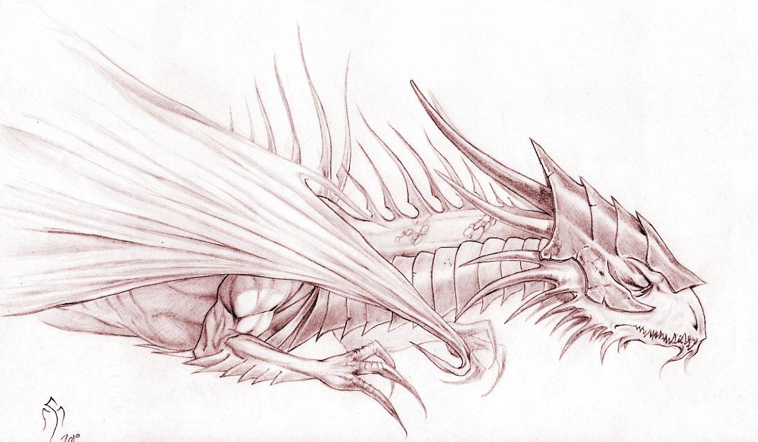 Dragones Fantasticos Dibujos De Dragones