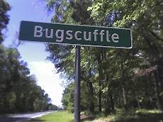 Broadcasting Live from    Bugscuffle, Texas