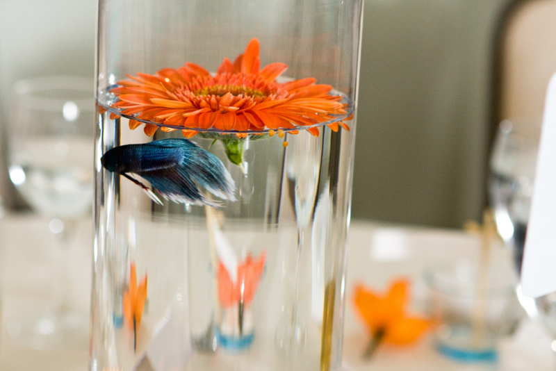 Ido it myself diy fish centerpieces for Fish wedding centerpieces